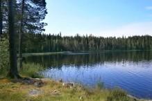 Lomsjön Vildmarksvägen Syd