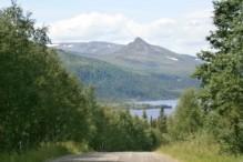 Vejen mod Härbergsdalen